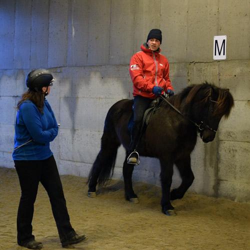 Elli er en kunstner med hester – bli med på kurs